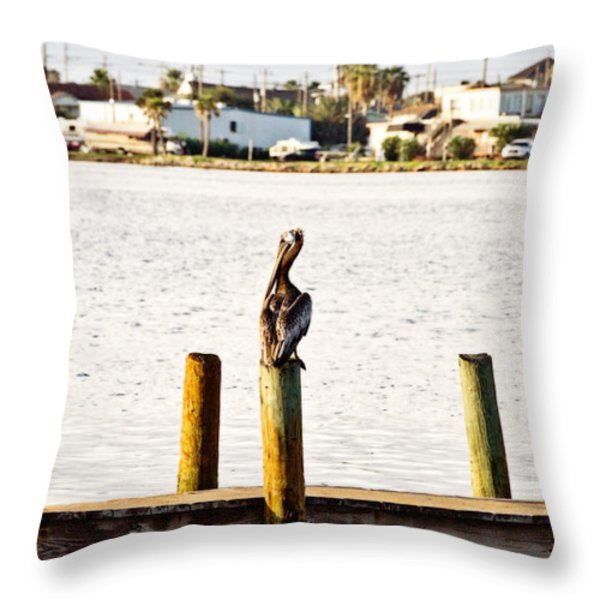 Watching Over The Bay Throw Pillow by Scott Pellegrin