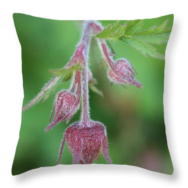 Water Aven Throw Pillow by Mark Severn