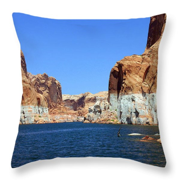 Water Canyons Throw Pillow by Bob Hislop