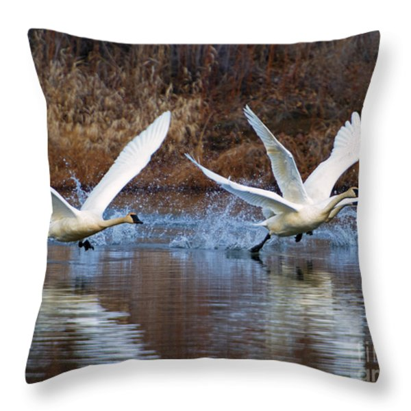 Water Dance Throw Pillow by Mike  Dawson