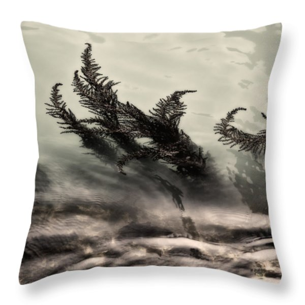 Water Fronds Throw Pillow by Dave Bowman