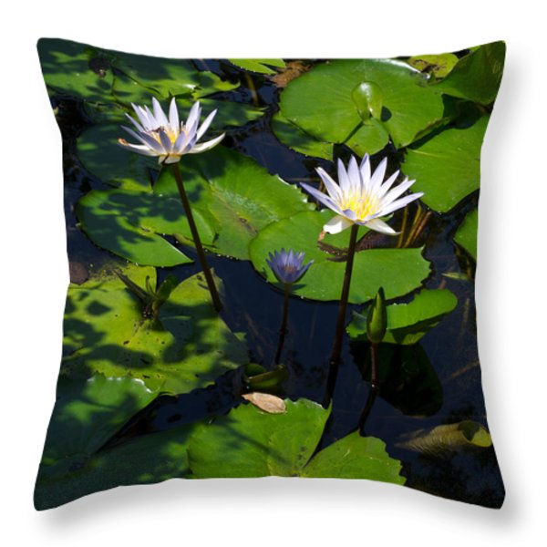 Water Garden I Throw Pillow by Calvin Humble