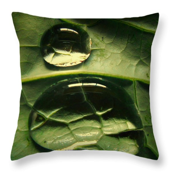 Water Life Throw Pillow by Diannah Lynch