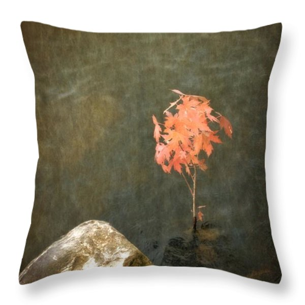 Water Maple Throw Pillow by Michelle Calkins
