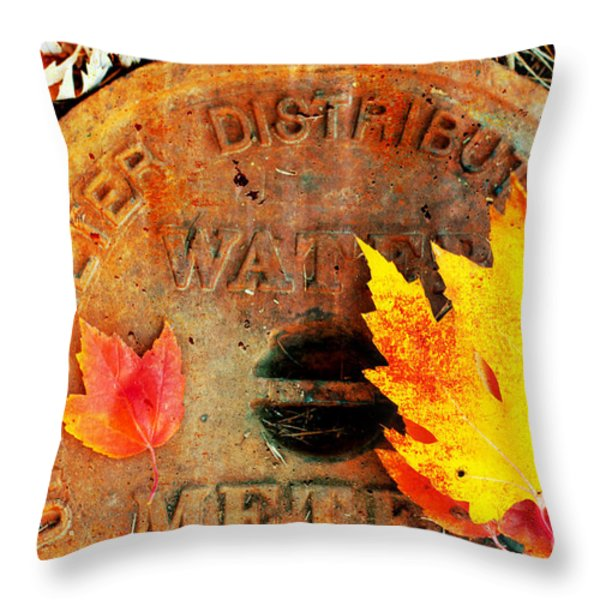 Water Meter Cover With Autumn Leaves Abstract Throw Pillow by Andee Design