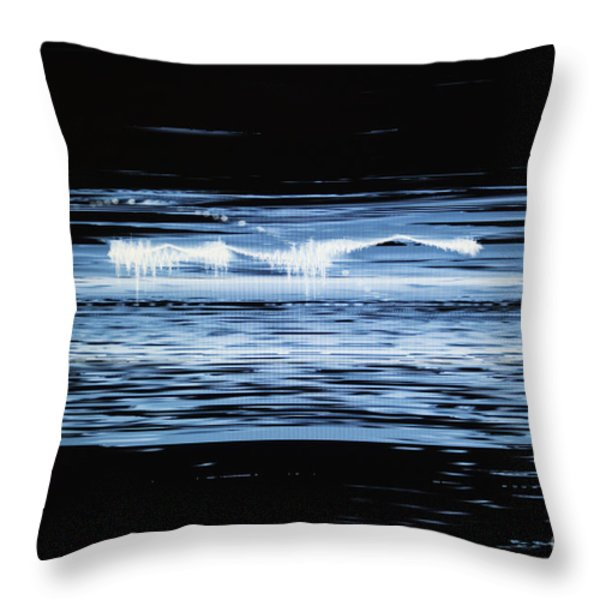 Water No. 2 Throw Pillow by Nasser Studios