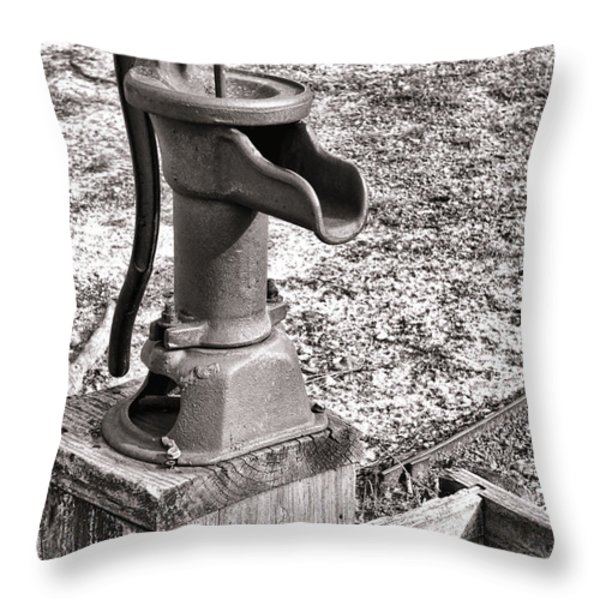 Water Pump and Trough Throw Pillow by Olivier Le Queinec