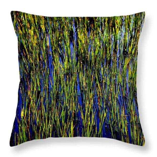 WATER REEDS Throw Pillow by KAREN WILES