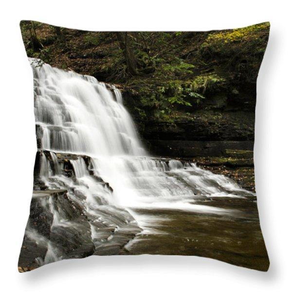 Waterfall Cascade Throw Pillow by Christina Rollo