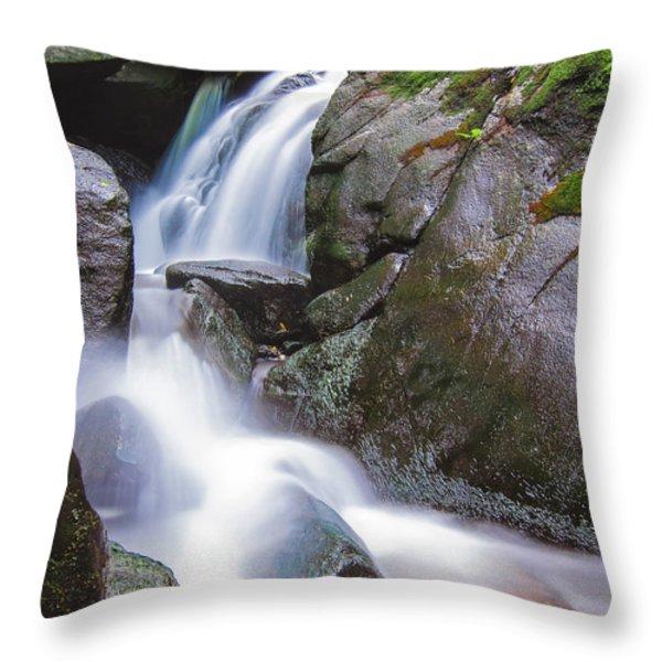Waterfall Throw Pillow by Eduard Moldoveanu