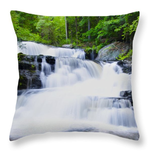 Waterfall in the Pocono Mountains Throw Pillow by Bill Cannon