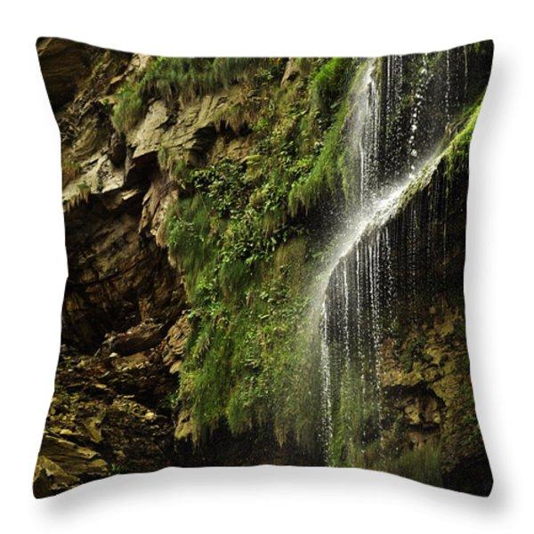 Waterfall Throw Pillow by Mariusz Zawadzki