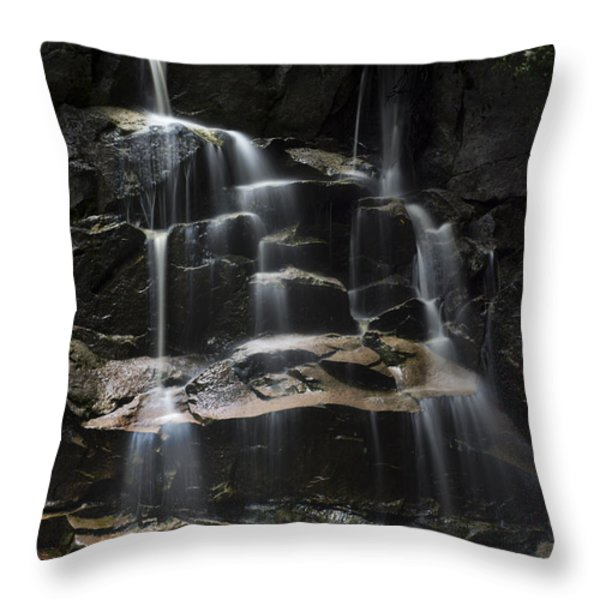 Waterfall On Small Stream Throw Pillow by Dan Friend