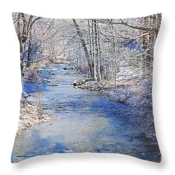 Water's Edge Throw Pillow by A New Focus Photography