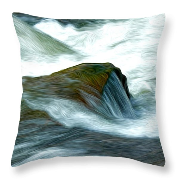 Waterspill Throw Pillow by David Kehrli