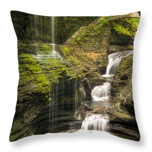 Watkins Glen Falls Throw Pillow by Anthony Sacco
