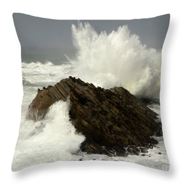 Wave At Shore Acres Throw Pillow by Bob Christopher