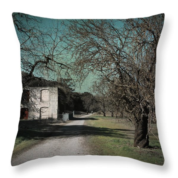 Way Back When Throw Pillow by Laurie Search