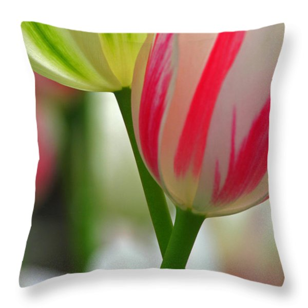 We are going to be Friends Throw Pillow by Juergen Roth