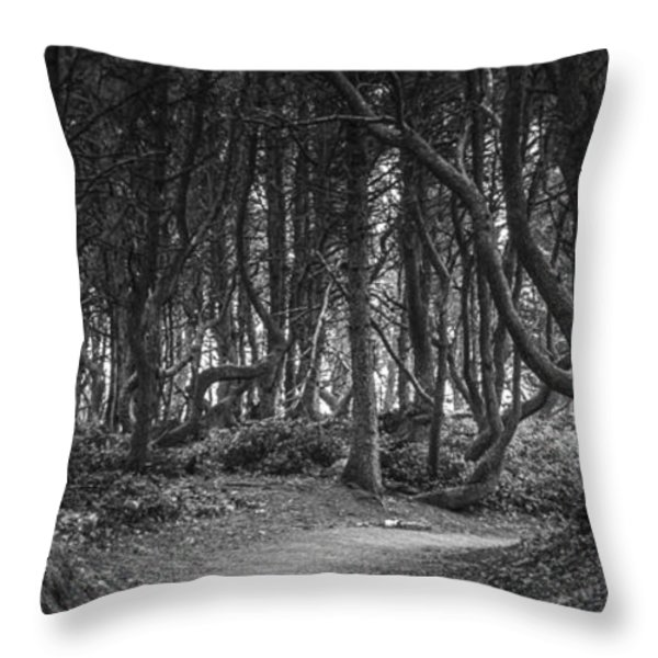 We follow the Path Throw Pillow by Jon Glaser