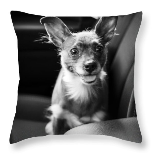 We Goin For A Ride Throw Pillow by Edward Fielding