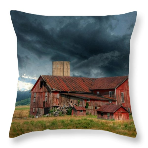 Weathering the Storm Throw Pillow by Lori Deiter