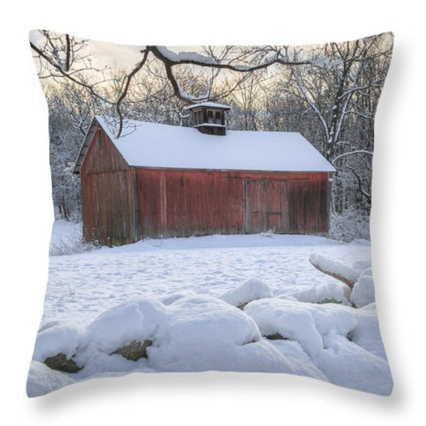 Weathering Winter Throw Pillow by Bill  Wakeley
