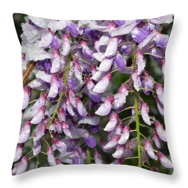 Weeping Wisteria - Spring Snow - Ice - Lavender - Flora Throw Pillow by Andee Design