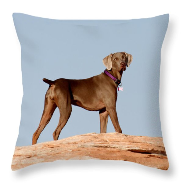 Weimaraner IIi - Lake Powell Throw Pillow by Julie Niemela