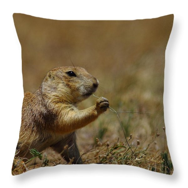 Well I Reckon So Throw Pillow by Robert Frederick