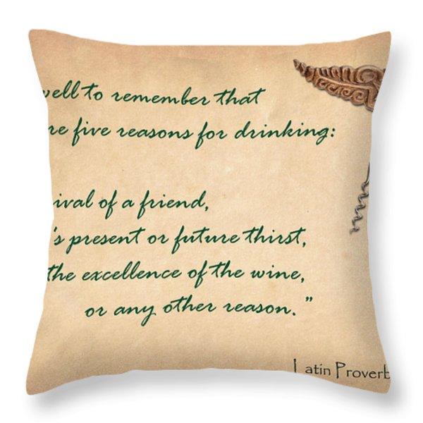 Well to Remember Throw Pillow by Elaine Plesser