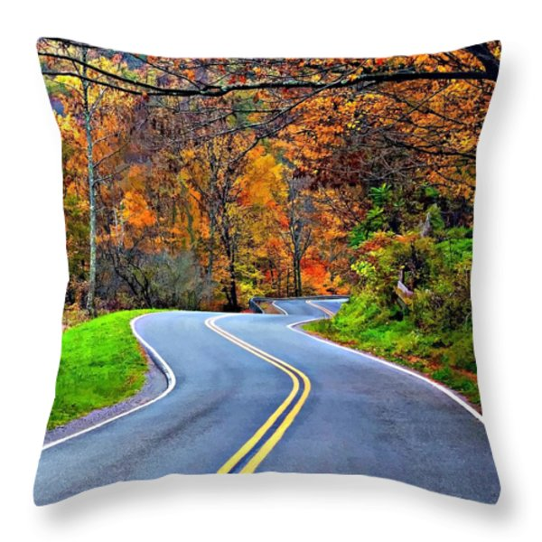 West Virginia Curves 2 Throw Pillow by Steve Harrington