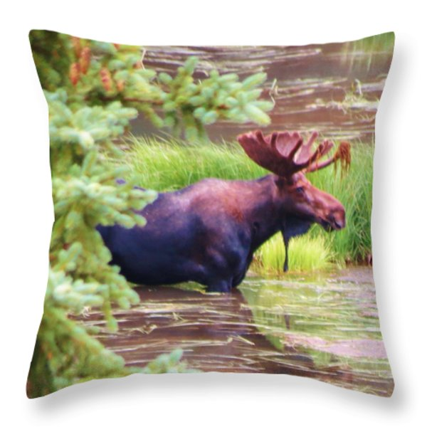 Wet and Wild Throw Pillow by Feva  Fotos