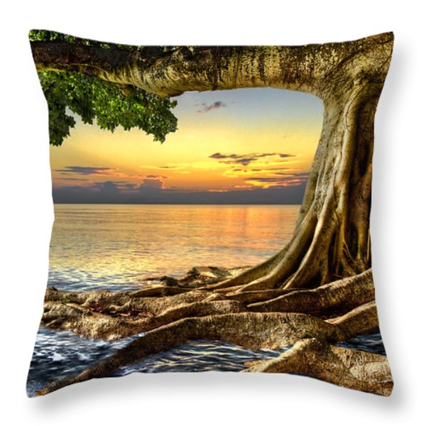 Wet Dreams Throw Pillow by Debra and Dave Vanderlaan