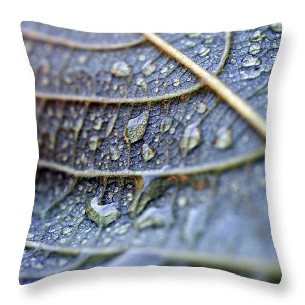 Wet Leaf Throw Pillow by Frank Tschakert