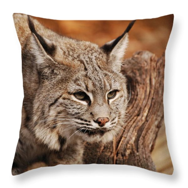 What A Face Throw Pillow by Lori Tambakis