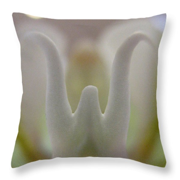What About Love Photography Throw Pillow by Tina Marie