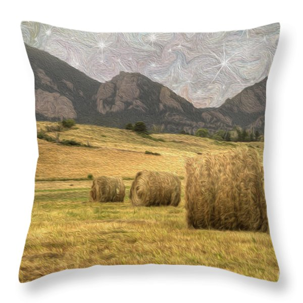 What The Hay Throw Pillow by Juli Scalzi