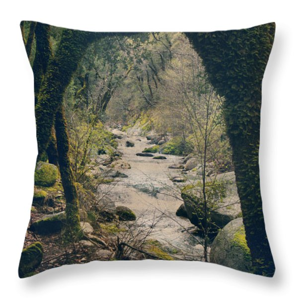 What We Could've Had Throw Pillow by Laurie Search