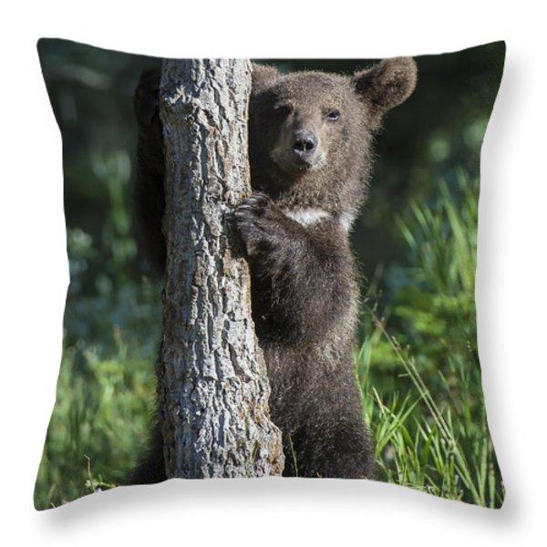 What's Mine is Mine III Throw Pillow by Sandra Bronstein