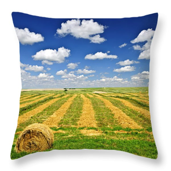 Wheat farm field and hay bales at harvest in Saskatchewan Throw Pillow by Elena Elisseeva