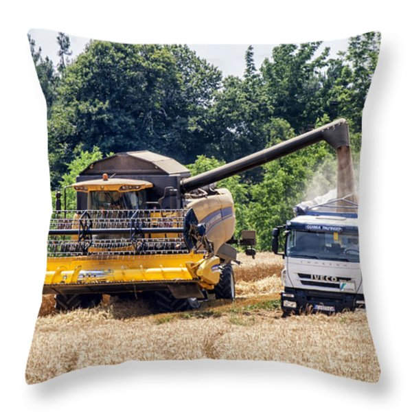 Wheat Harvest Throw Pillow by Nomad Art And  Design