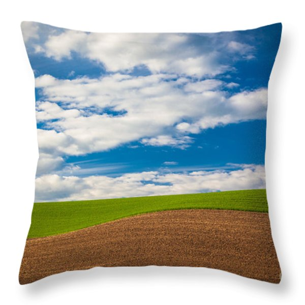 Wheat Wave Throw Pillow by Inge Johnsson