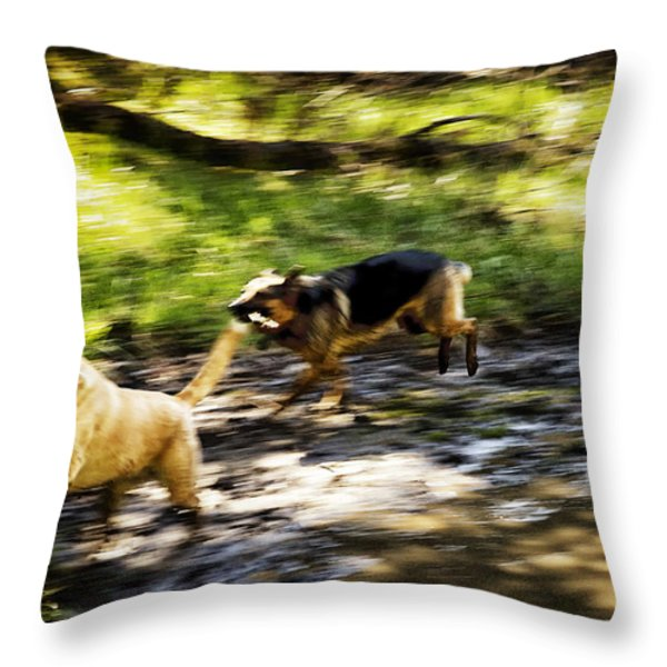 When Life Gives You A Mud Puddle . . . Throw Pillow by Belinda Greb