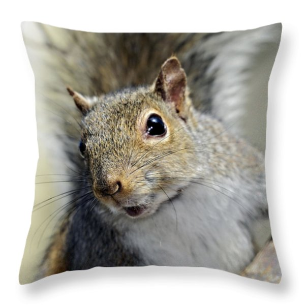 Where Are The Nuts Throw Pillow by Susan Leggett