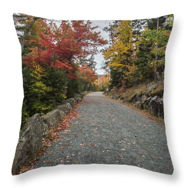 Where I Go Throw Pillow by Jon Glaser