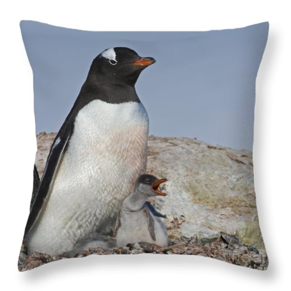 Where is my Krill... Throw Pillow by Nina Stavlund