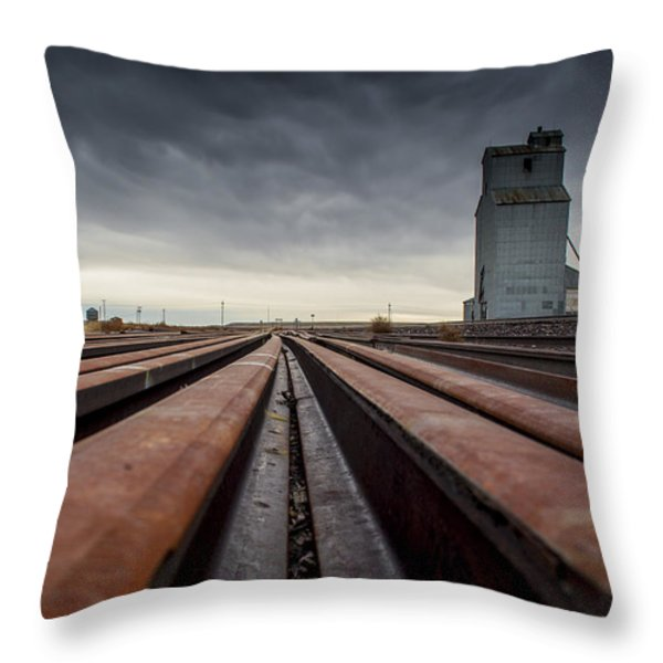 Where It Goes-2 Throw Pillow by Fran Riley
