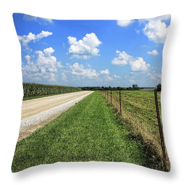 Where The Road May Take You Throw Pillow by Cathy  Beharriell