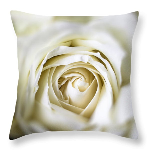 Whie Rose Softly Throw Pillow by Garry Gay